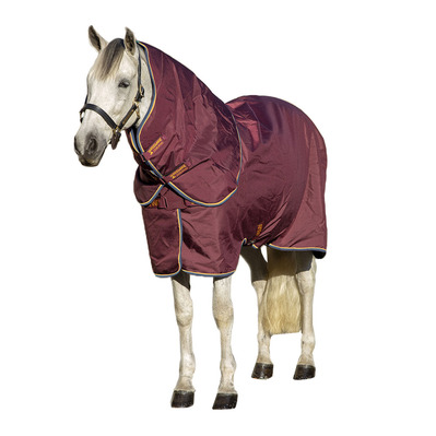 HORSEWARE - Amigo Plus Stable 100g w/disc Unisexe Burgundy/ Orange Teal & Navy