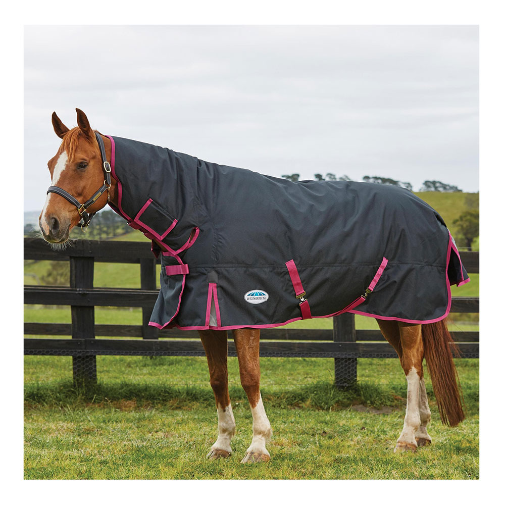 Horse Rug Clearance Weatherbeeta