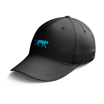 AIRNESS - DUCK COL - Cap - Men's - black/turquoise