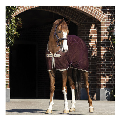 HORSEWARE - AMIGO NET COOLER - Coperta assorbente fig/navy/tan