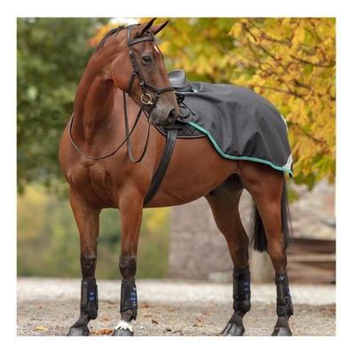 HORSEWARE - Amigo Comp Sheet Unisexe Black/Teal&Dark Cherry
